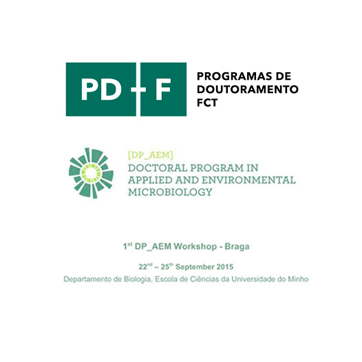 Workshop program the Doctoral Program DP_AEM