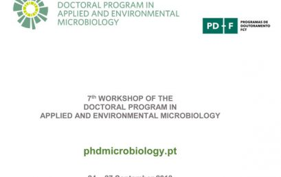 7th Workshop of the Doctoral Program DP_AEM