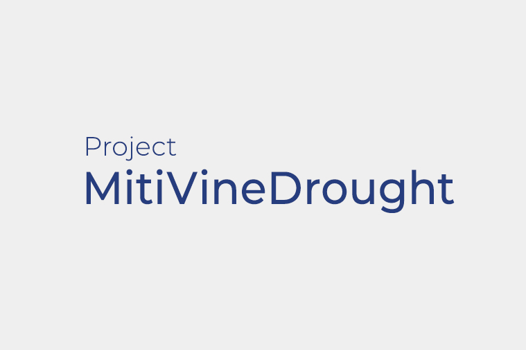 "MitiVineDrought- Combining ""omics"" with molecular, biochemical and physiological analyses as an integrated effort to validate novel and easy-to-implement drought mitigation strategies in grapevine while reducing wate"