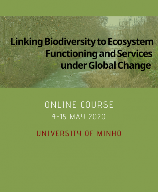 Linking Biodiversity to Ecosystem Functioning and Services under Global Change