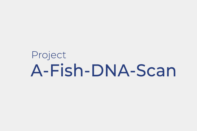 A-Fish-DNA-Scan –  Cutting-edge DNA-based approaches for improved monitoring and management of fisheries resources along Magellan-Elcano's Atlantic route