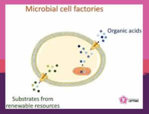 Internacional Microorganism Day – new article on FEMS